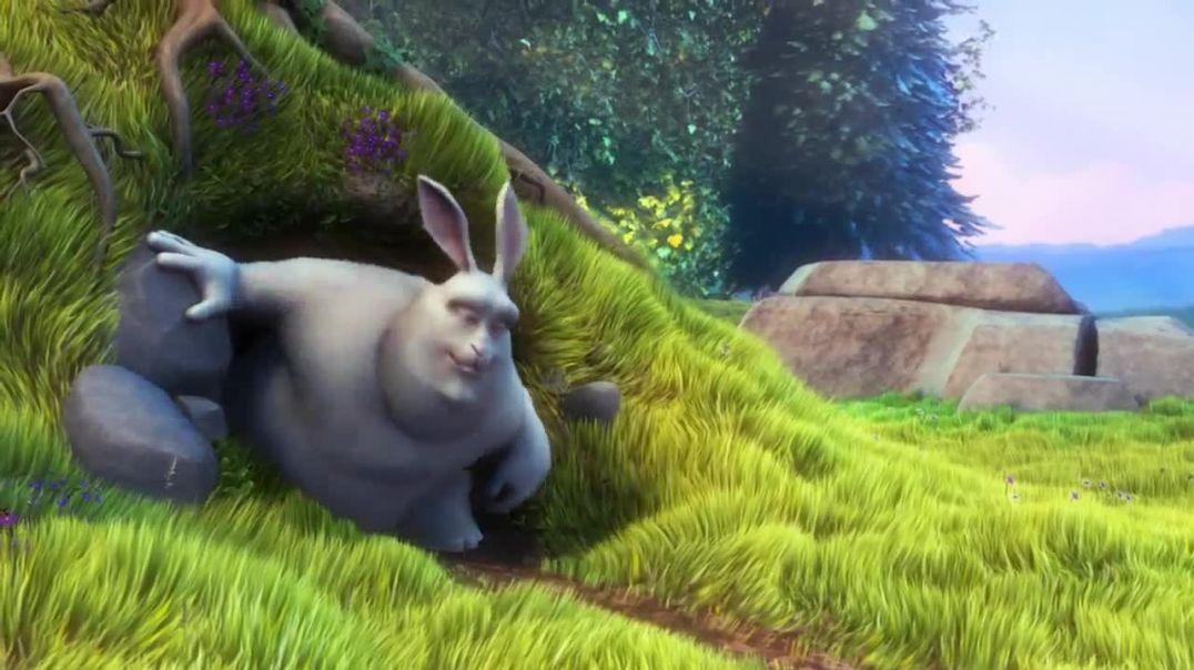 Bunny.mp4